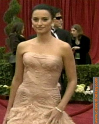penelope cruz oscar dress 2007. Penelope Cruz